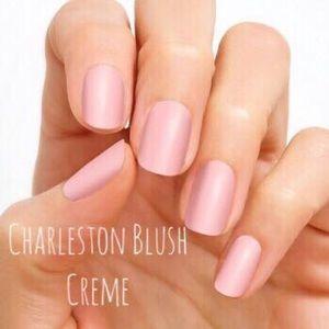 Accessories - Color Street Nail Strips - Charleston Blush